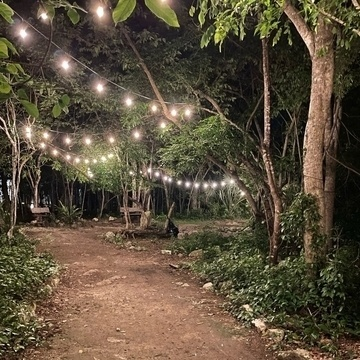 A gravel path with lights strung above.